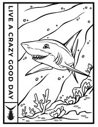 Tunaskin Coloring Sheet-Shark